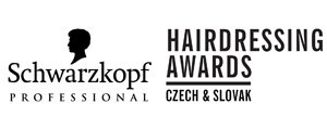 Czech and Slovak Hairdressing Awards 2011, Дюденко